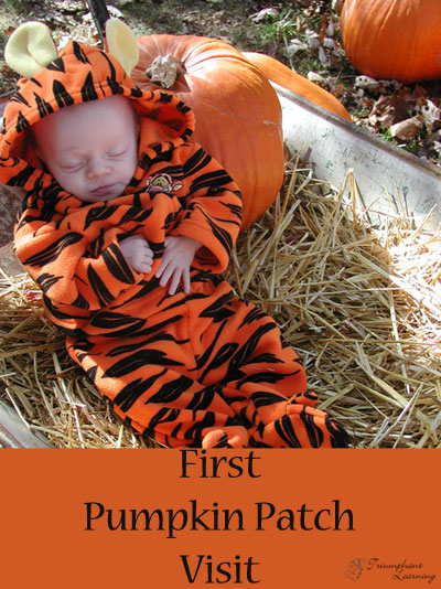 First Pumpkin Patch Visit | Triumphant Learning