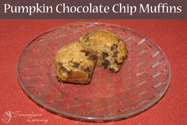 Pumpkin Chocolate Chip Muffins—A delectable treat for a fall breakfast. | Triumphant Learning
