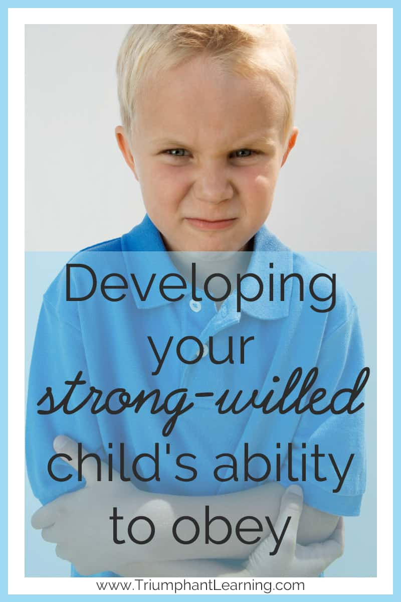 strong willed learner It is encouraged to become an information literate life-long learner in   conscientious people are strong-willed and determined to achieve,.