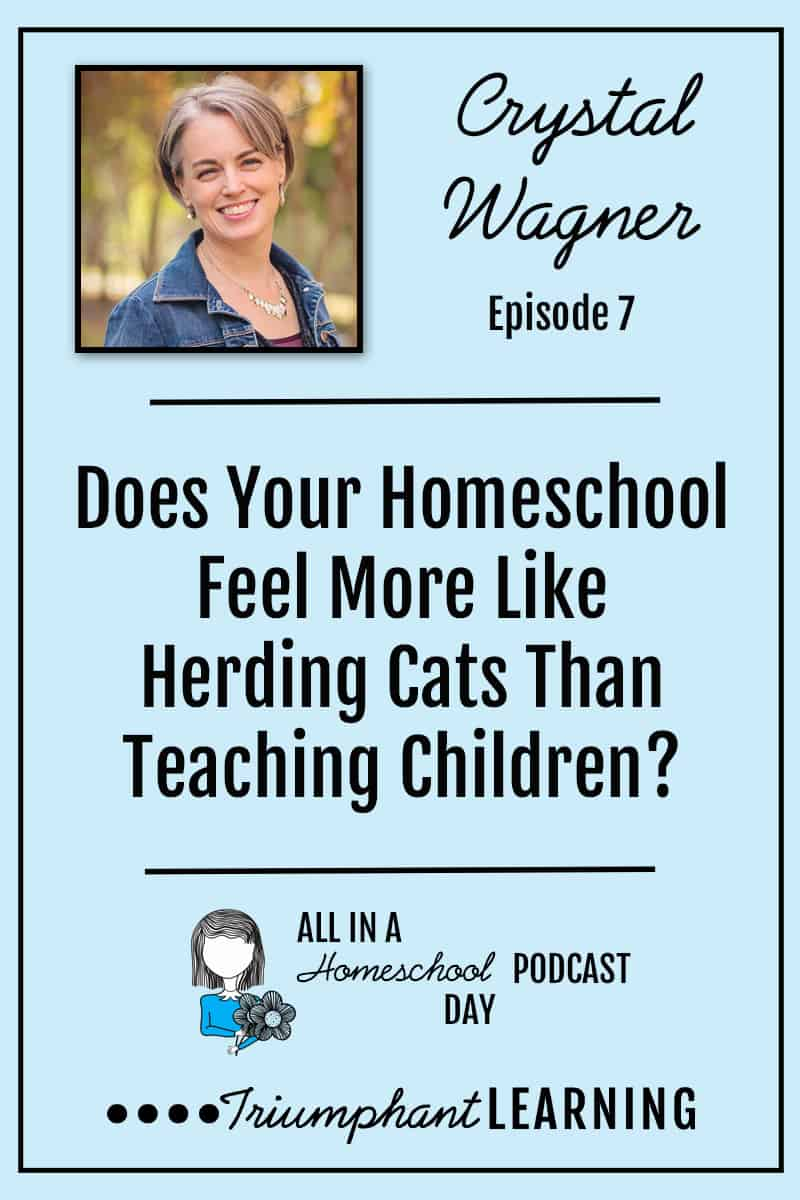 It's difficult to accomplish anything in your homeschool when it feels like you are herding cats and no one is heading in the right direction. In this episode, you will hear about six things that help our homeschool stay on track. via @TriLearning