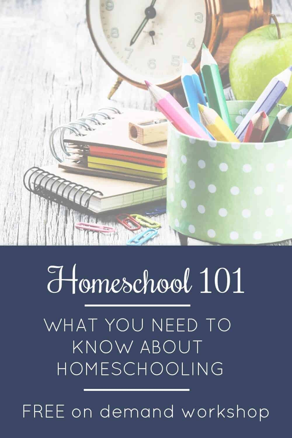 Learn what you need to know about homeschooling and how to get started in this FREE on-demand workshop! Plus, four FREE getting started guides. via @TriLearning